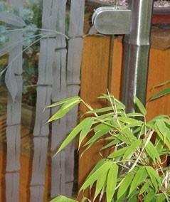Bamboo-Pattern-239x300